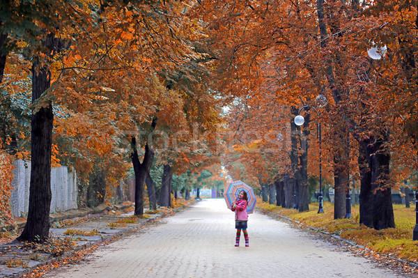 happy little girl with umbrella on street autumn season Stock photo © goce