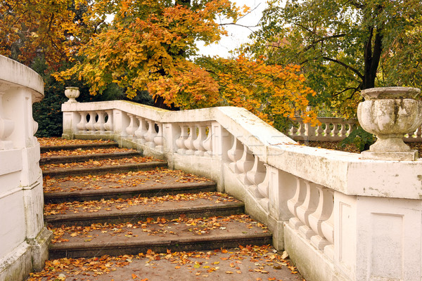 park with white staircase and fallen leaves autumn season Stock photo © goce