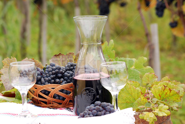 red wine and grape autumn season Stock photo © goce