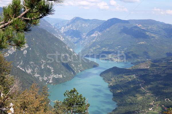 Banjska stena viewpoint Tara Mountain Serbia Stock photo © goce