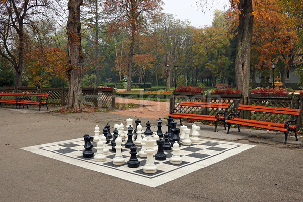 black and white chess figures in park autumn season Stock photo © goce