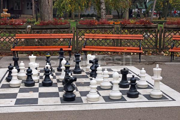 chess figures in park autumn season  Stock photo © goce