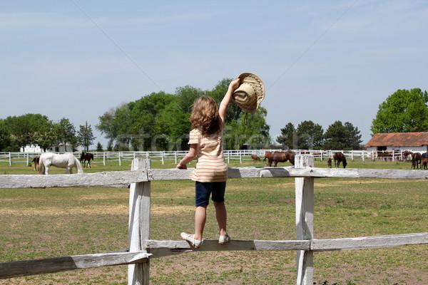 Zdjęcia stock: Dziewczynka · hat · strony · stałego · ogrodzenia · dziewczyna