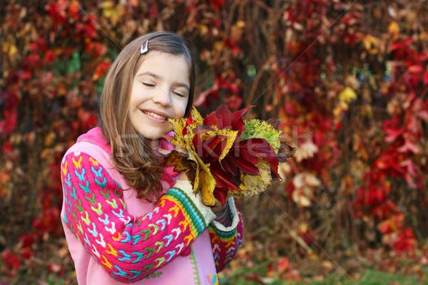 Stok fotoğraf: Güzel · küçük · kız · renkli · sonbahar · yaprakları · çocuk