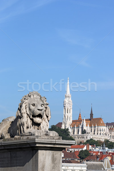 Budapeşte zincir köprü aslan heykel gökyüzü Stok fotoğraf © goce
