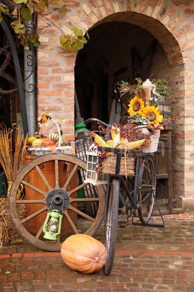 farm yard with old stuff autumn season Stock photo © goce