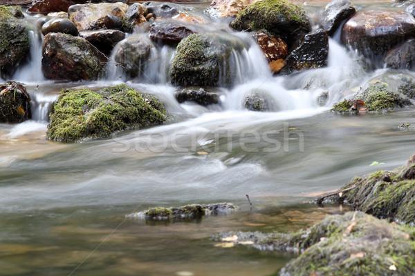 Patak kövek tavasz jelenet levél hegy Stock fotó © goce