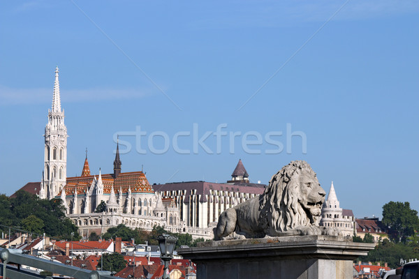 chain bridge lion statue and Fisherman bastion Budapest Stock photo © goce