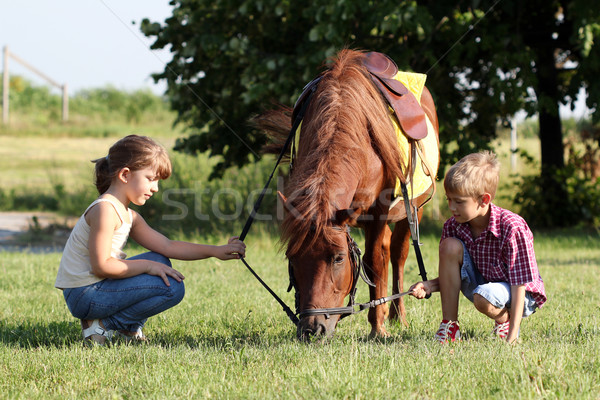 little girl and boy play with pony horse  Stock photo © goce