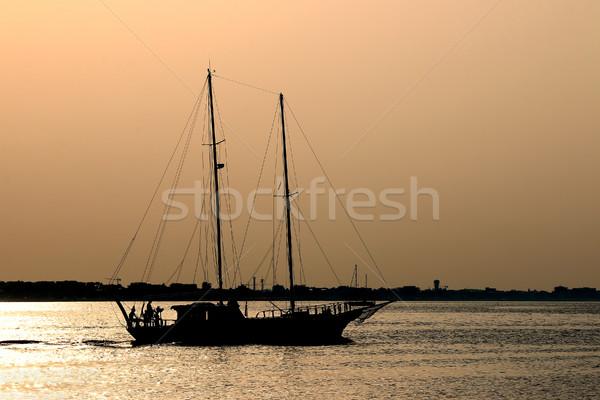 парусника силуэта морем лет сезон небе Сток-фото © goce