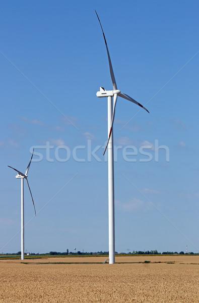 Campo de trigo natureza tecnologia campo verde Foto stock © goce