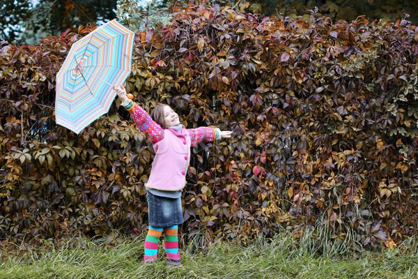 Heureux petite fille saison d'automne fille amusement laisse Photo stock © goce