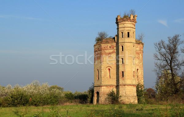 Starych zamek Serbia niebo trawy budynku Zdjęcia stock © goce