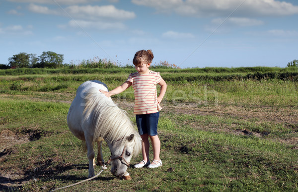 Stock photo: white pony horse and little girl