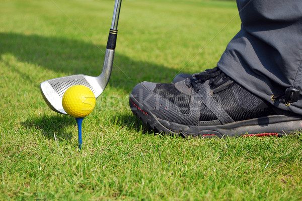 golf ball Stock photo © goce