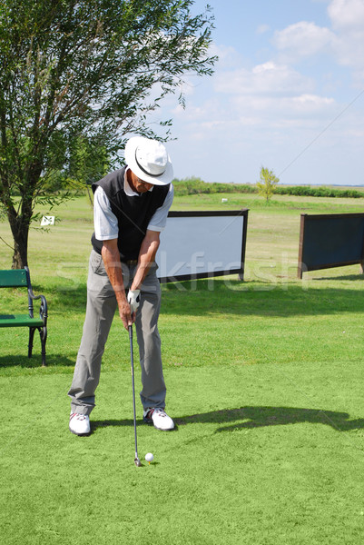 golf player prepare for hit Stock photo © goce