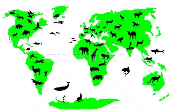 animal world Stock photo © goce