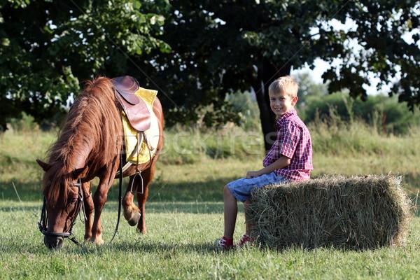 pony horse pet and happy boy Stock photo © goce