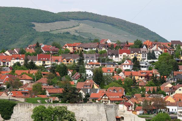 Casas colina acima Hungria edifício cidade Foto stock © goce