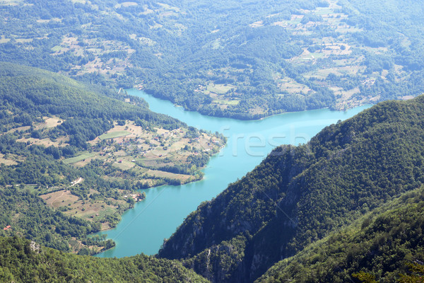 Biljeska stena viewpoint Tara mountain Serbia Stock photo © goce