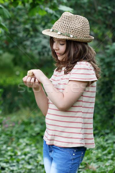 little girl holding cute small chicken Stock photo © goce