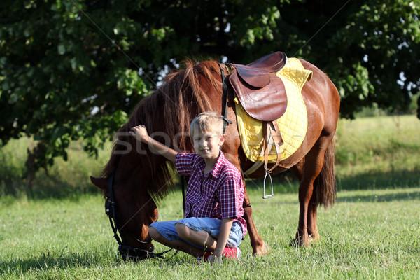 Póni ló vidám fiú gyermek mező zöld Stock fotó © goce