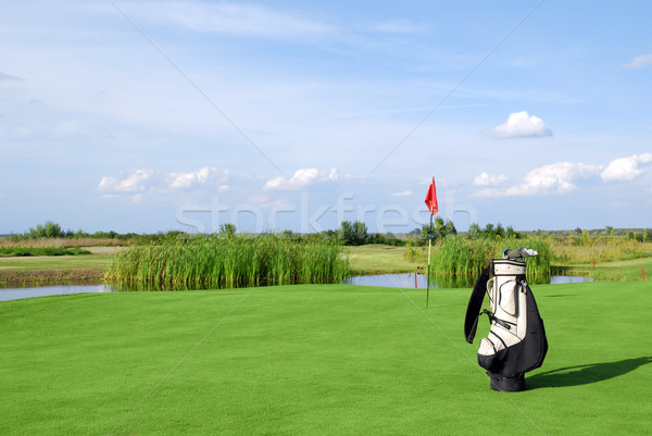 golf field with flag and golf bag Stock photo © goce