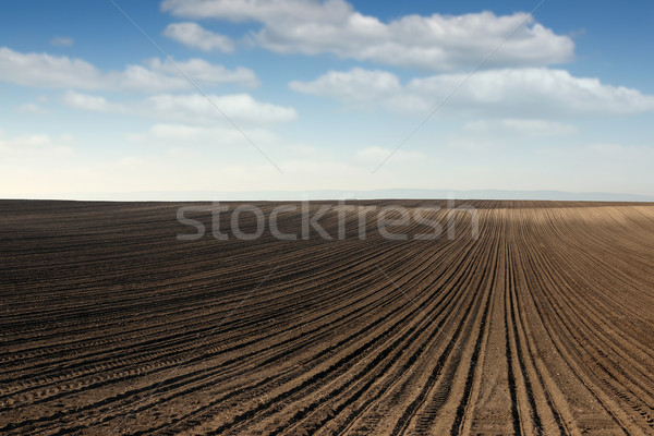 plowed field landscape nature background Stock photo © goce