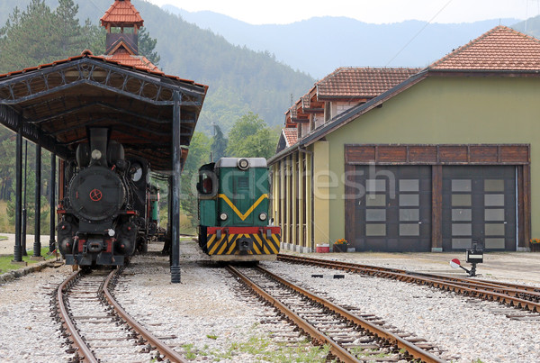 railroad station with old trains Stock photo © goce