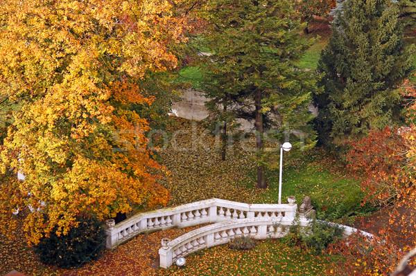 white stone staircase in park autumn season Stock photo © goce
