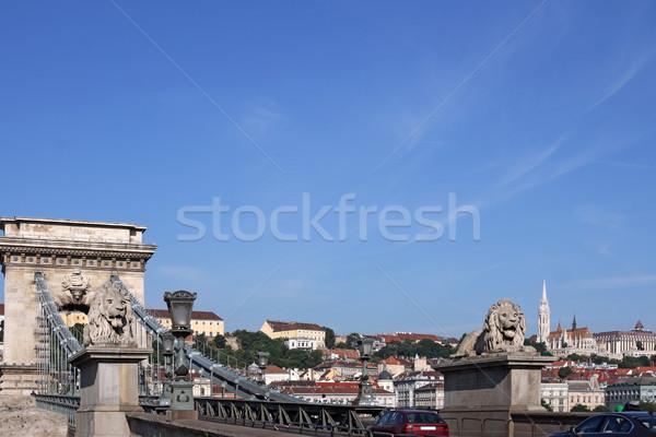 Chain bridge with lion statue Budapest Hungary Stock photo © goce