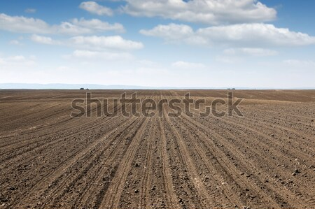 plowed field  country landscape spring season agriculture Stock photo © goce