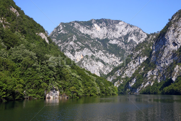 Río canón paisaje verano temporada Serbia Foto stock © goce