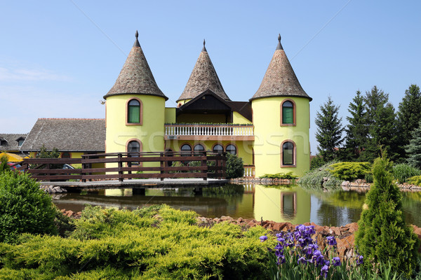 castle with pond Eastern Europe Serbia Stock photo © goce