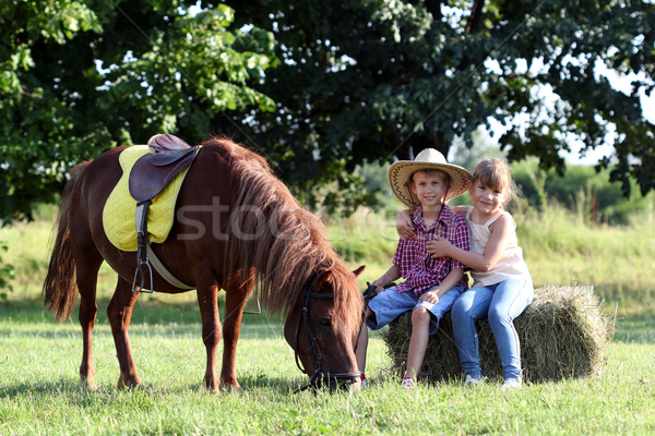 Stock photo: happy little girl and boy with pony horse