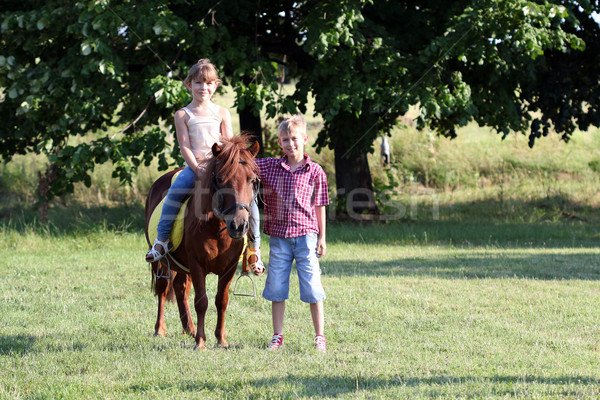 Boldog kislány fiú póni ló mező Stock fotó © goce