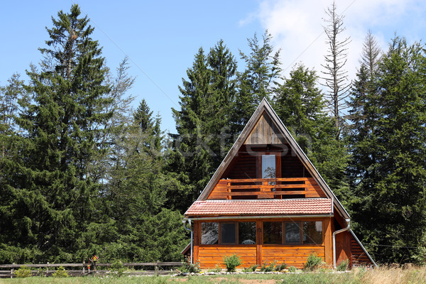 Cabaña montana verano temporada forestales Foto stock © goce