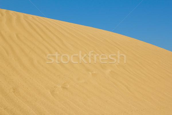 Oro duna naturaleza paisaje desierto arena Foto stock © goce