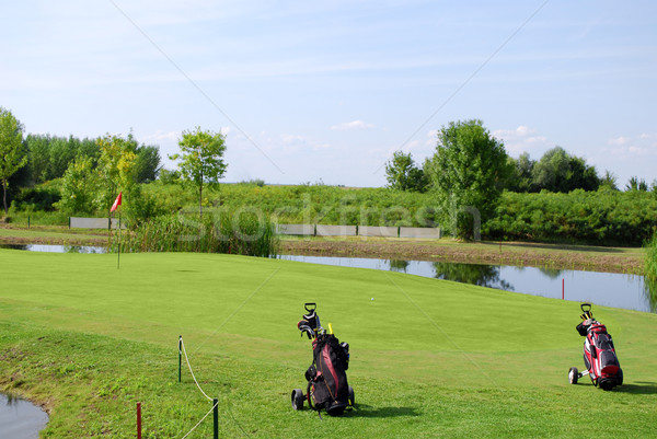 golf field with two golf bag Stock photo © goce