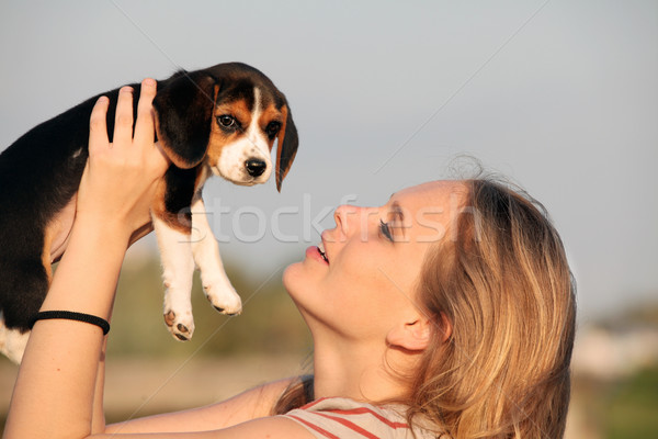 woman with pet beagle dog Stock photo © godfer