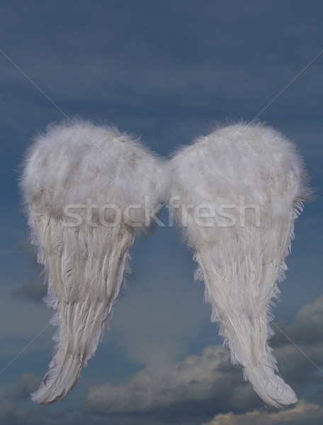christmas holiday angel wings Stock photo © godfer