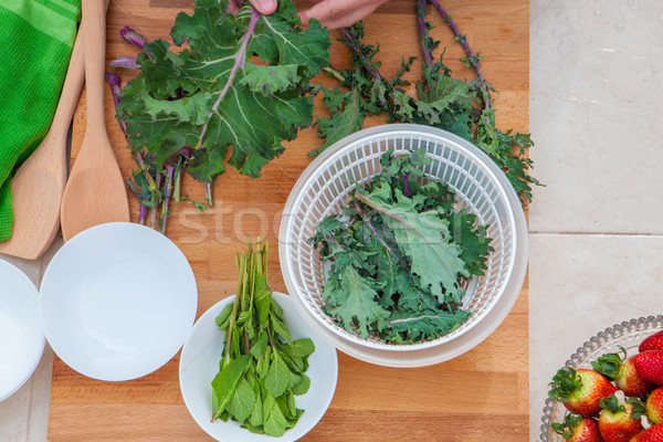 kale and herbs vegan organic vegetables Stock photo © godfer