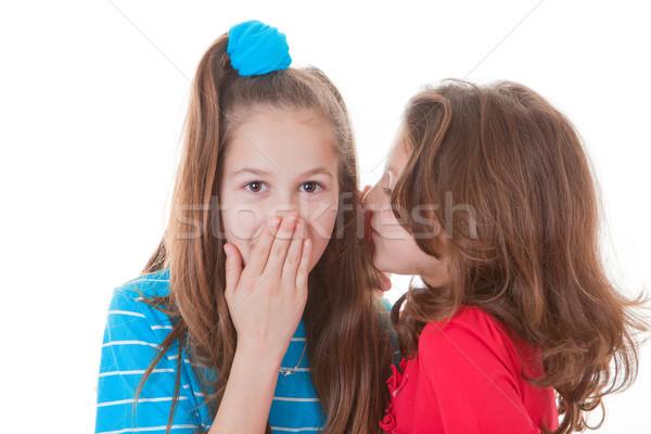 Gyerekek suttog titkok pletyka botrány kezek Stock fotó © godfer