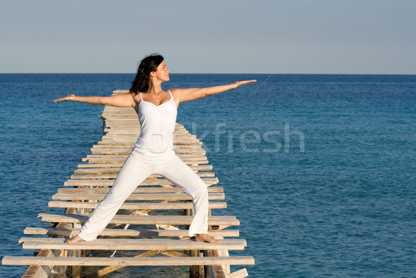 tai chi woman Stock photo © godfer