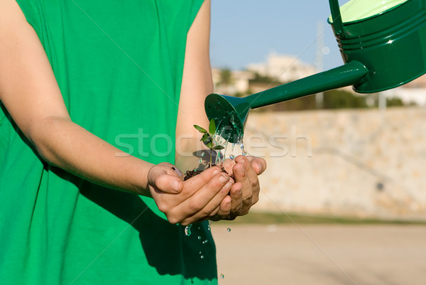 conservation concept, child holding plant while watering it Stock photo © godfer