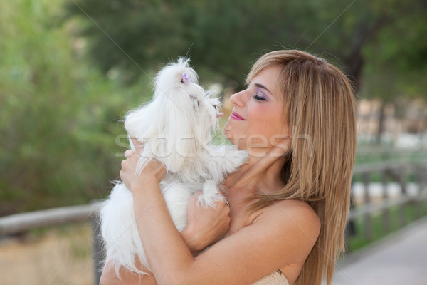Stock photo: Maltese dogs with owners