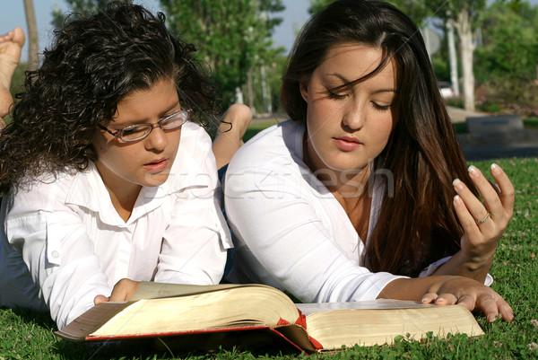 Fiatalság tinédzserek olvas könyv Biblia kint Stock fotó © godfer