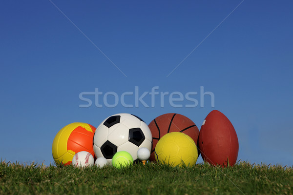 set of different sports balls Stock photo © godfer