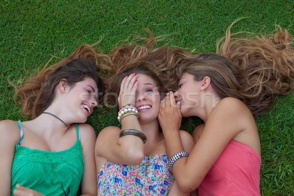 Egészséges nyár tinédzserek kint lányok fű Stock fotó © godfer