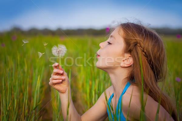 Little girl dandelion campo menina primavera Foto stock © godfer